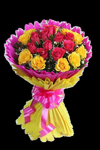 Multiclor roses