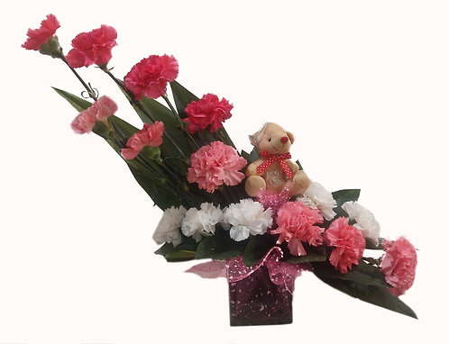 Teddy and Carnations