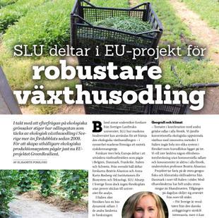 SLU deltar i projekt för robustare växthusodling