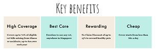 Key Benefit_Before.png