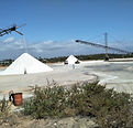 Cleopatra Salt Producing.jpg