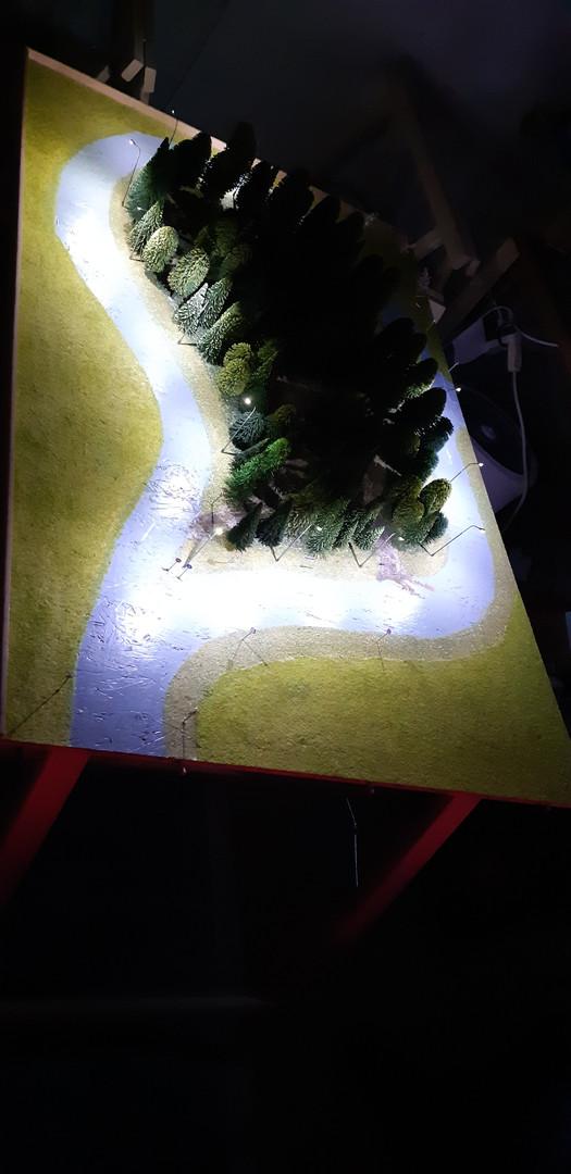 Wald beleuchtet