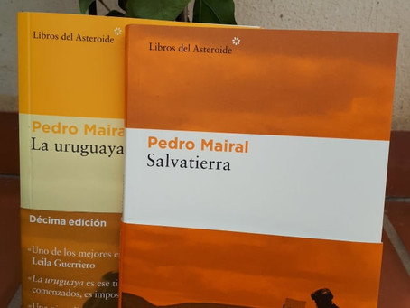Salvatierra, de Pedro Mairal