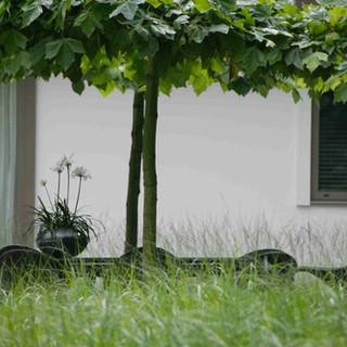 Kristof Swinnen 37.jpg