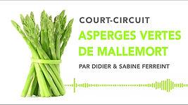 Court Circuit.jpg