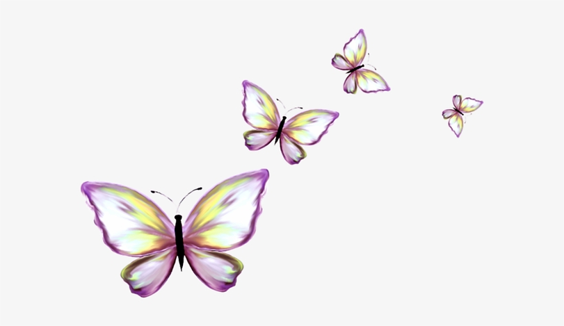 319-3197131_papillon-clipart-border-butterfly.png