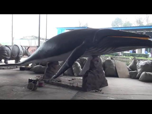 고래.mp4