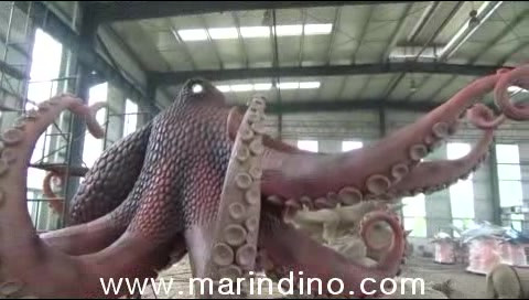 [mix]Octopus.avi