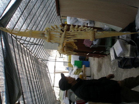 어류박제-국토201121 (2).JPG