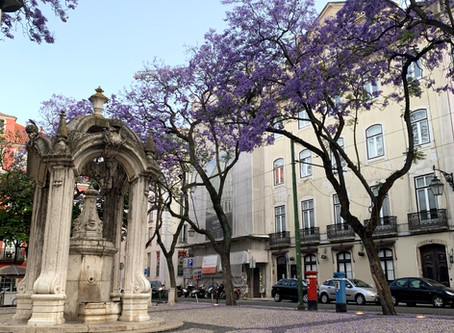 A insegurança de uma Lisboa vazia