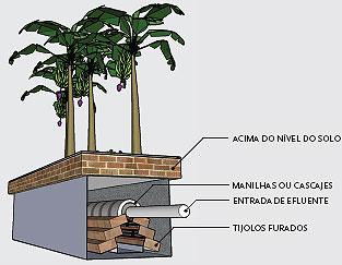 Fossa Ecológica