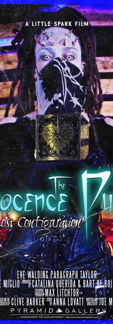The Innocence Puzzle - The Lost Configur