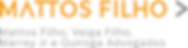 Logo MF (colorido).png
