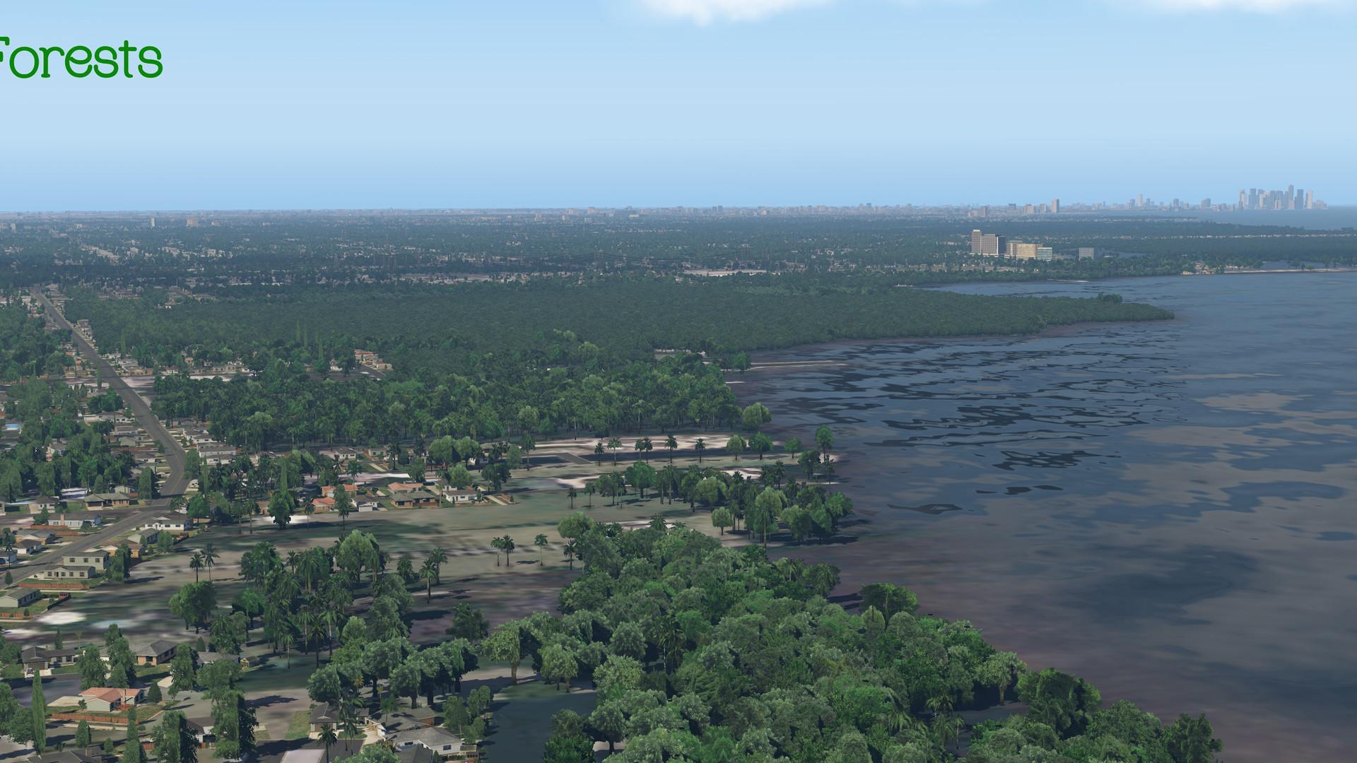 Global_Forests_Florida.jpg