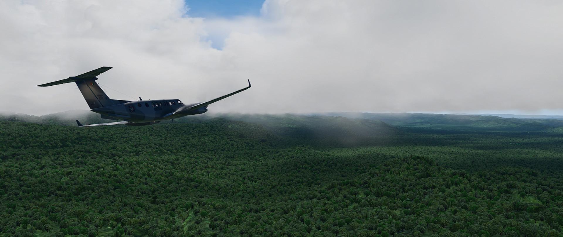 Global_Forests_Venezuela.jpg