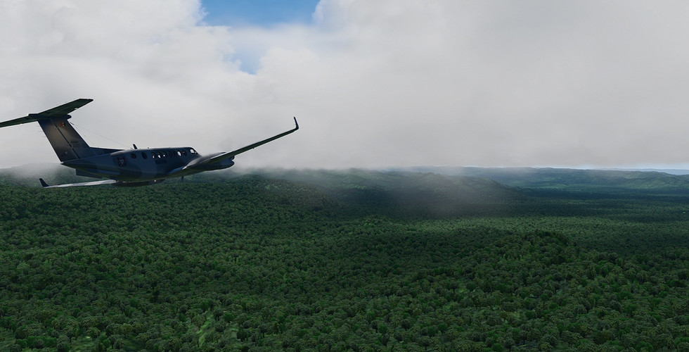 Global_Forests_Venezuela.jpg