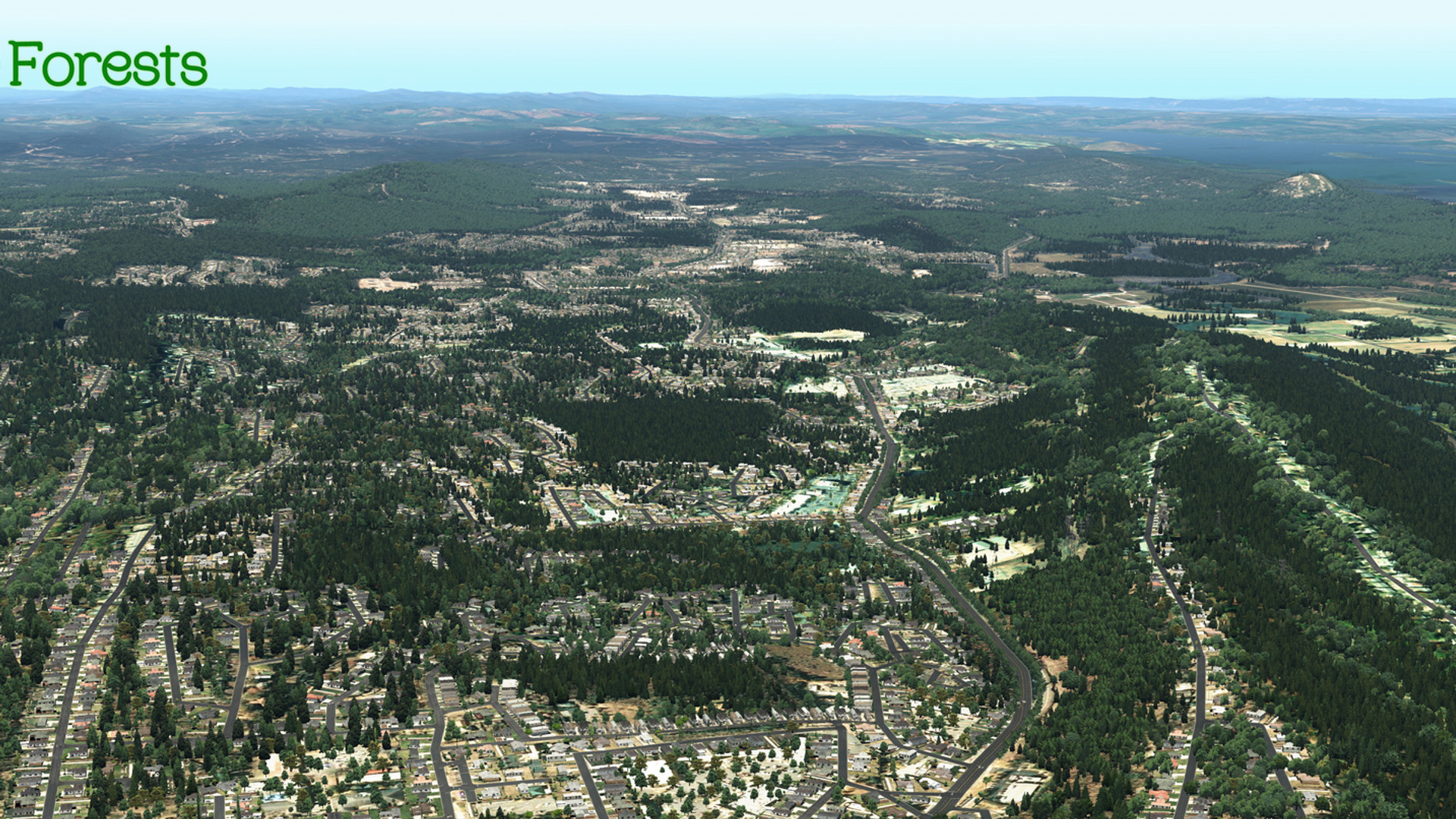Global_Forests_USA6.jpg