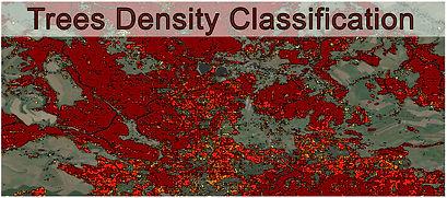 Tree_density_Classification.jpg