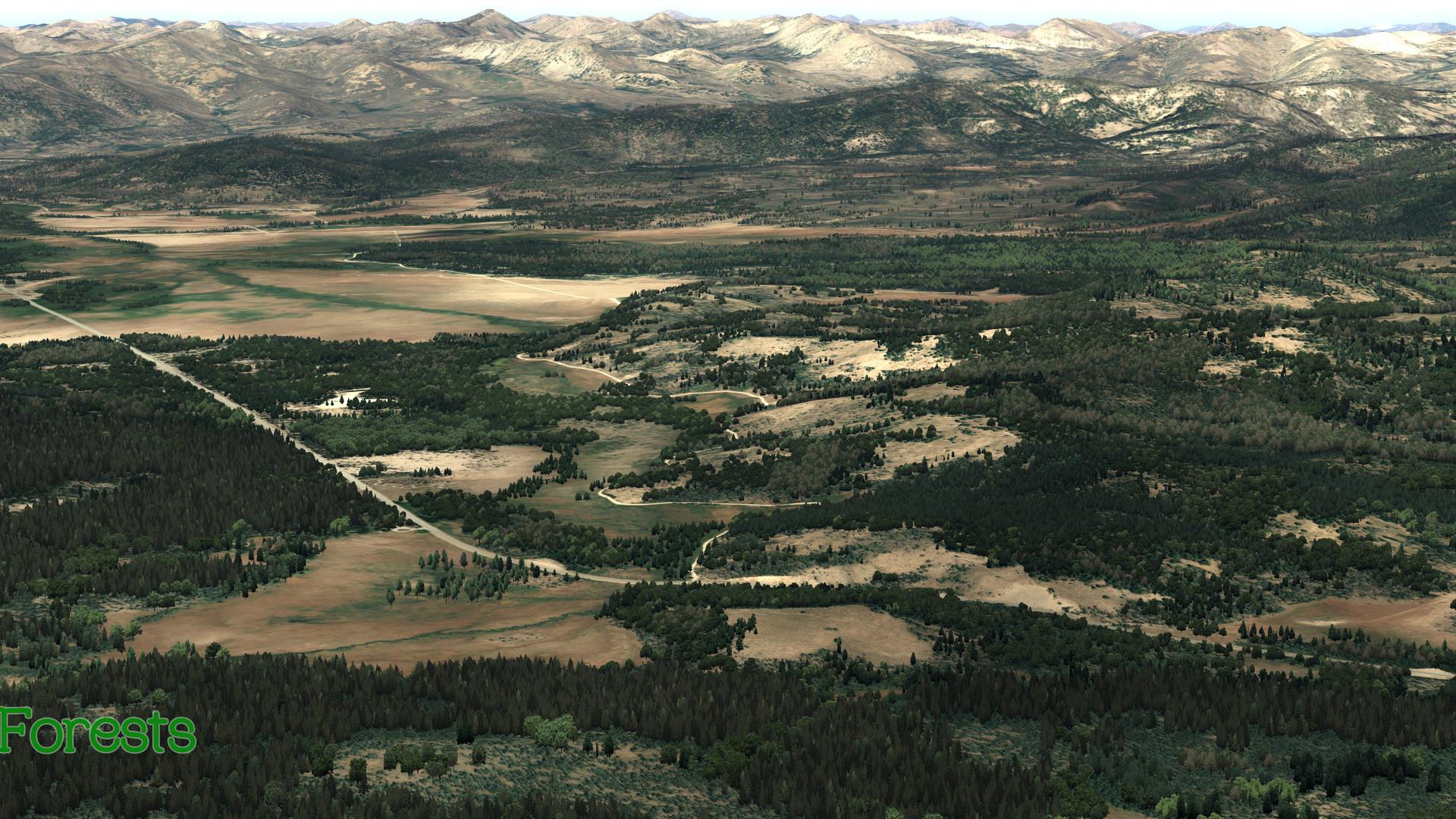 Global_Forests_USA2.jpg