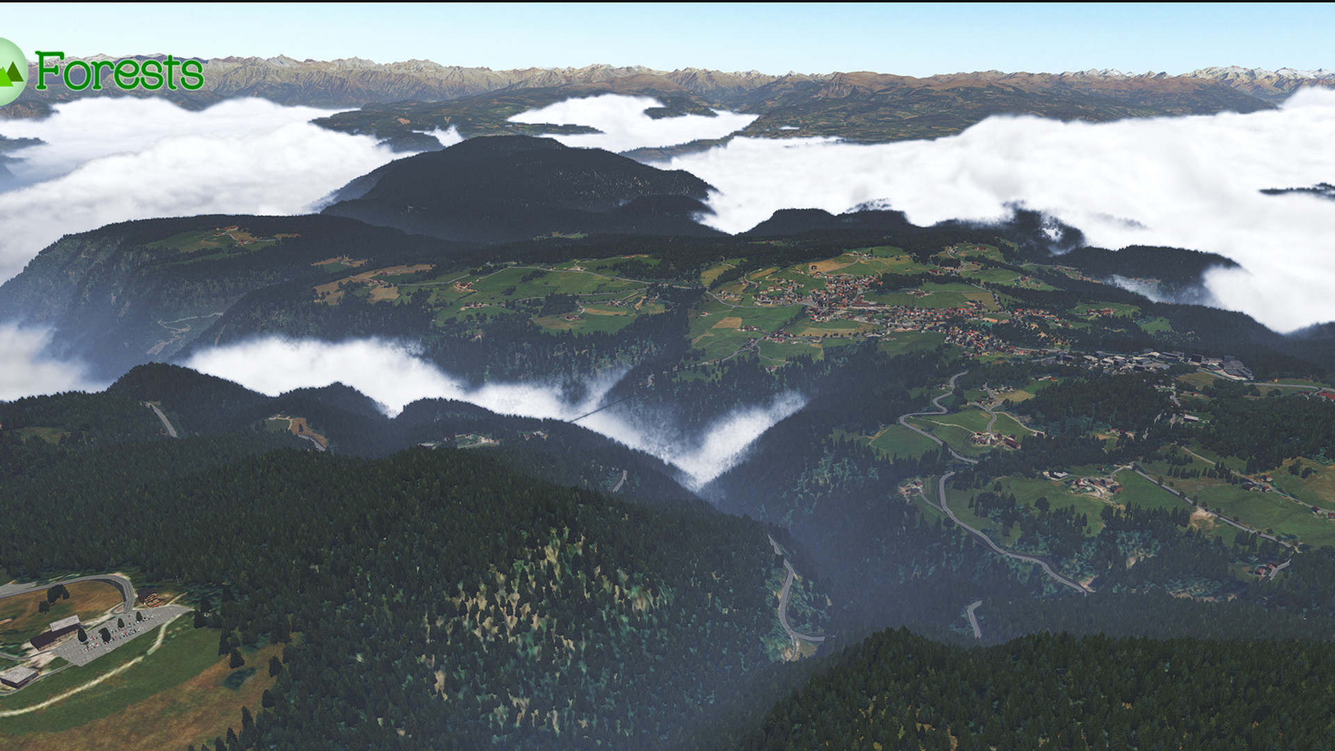 Global_Forests_Alps2.jpg