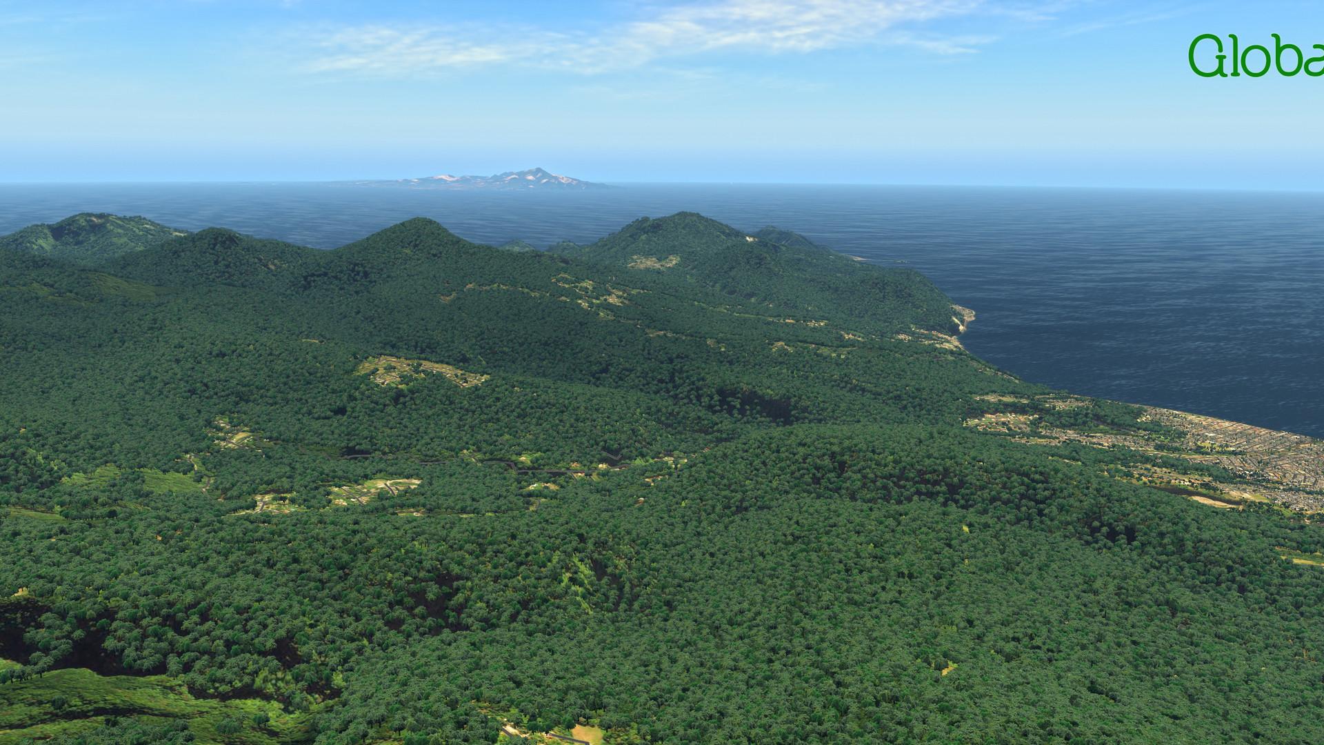 Global_Forests_Carribean3.jpg