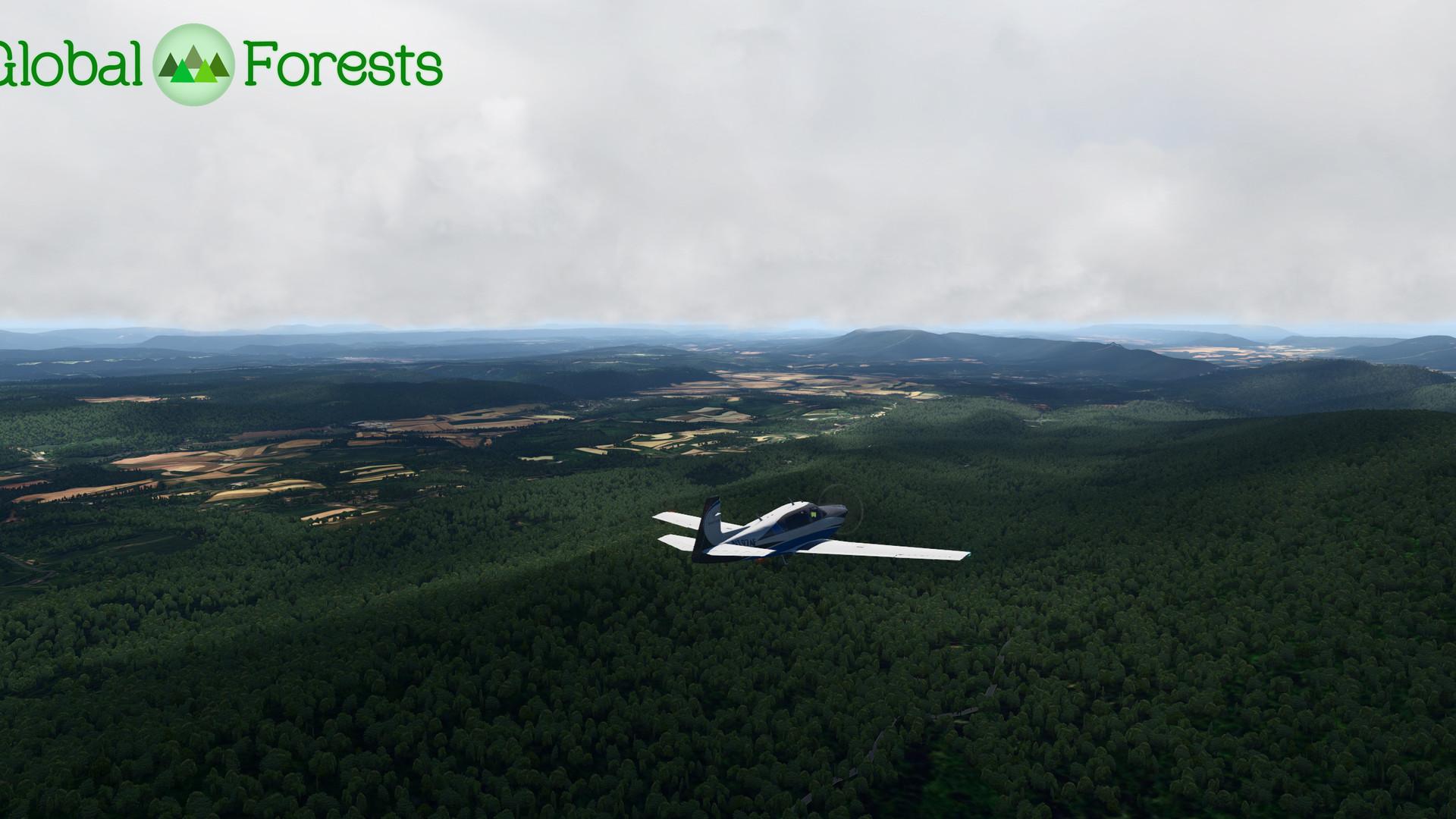 Global_Forests_USA4.jpg