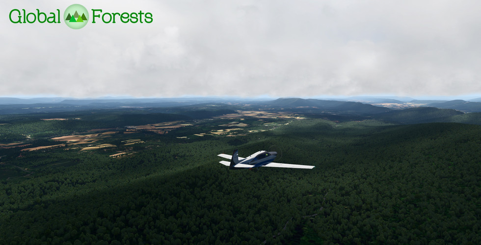 Global_Forests_USA4.jpg