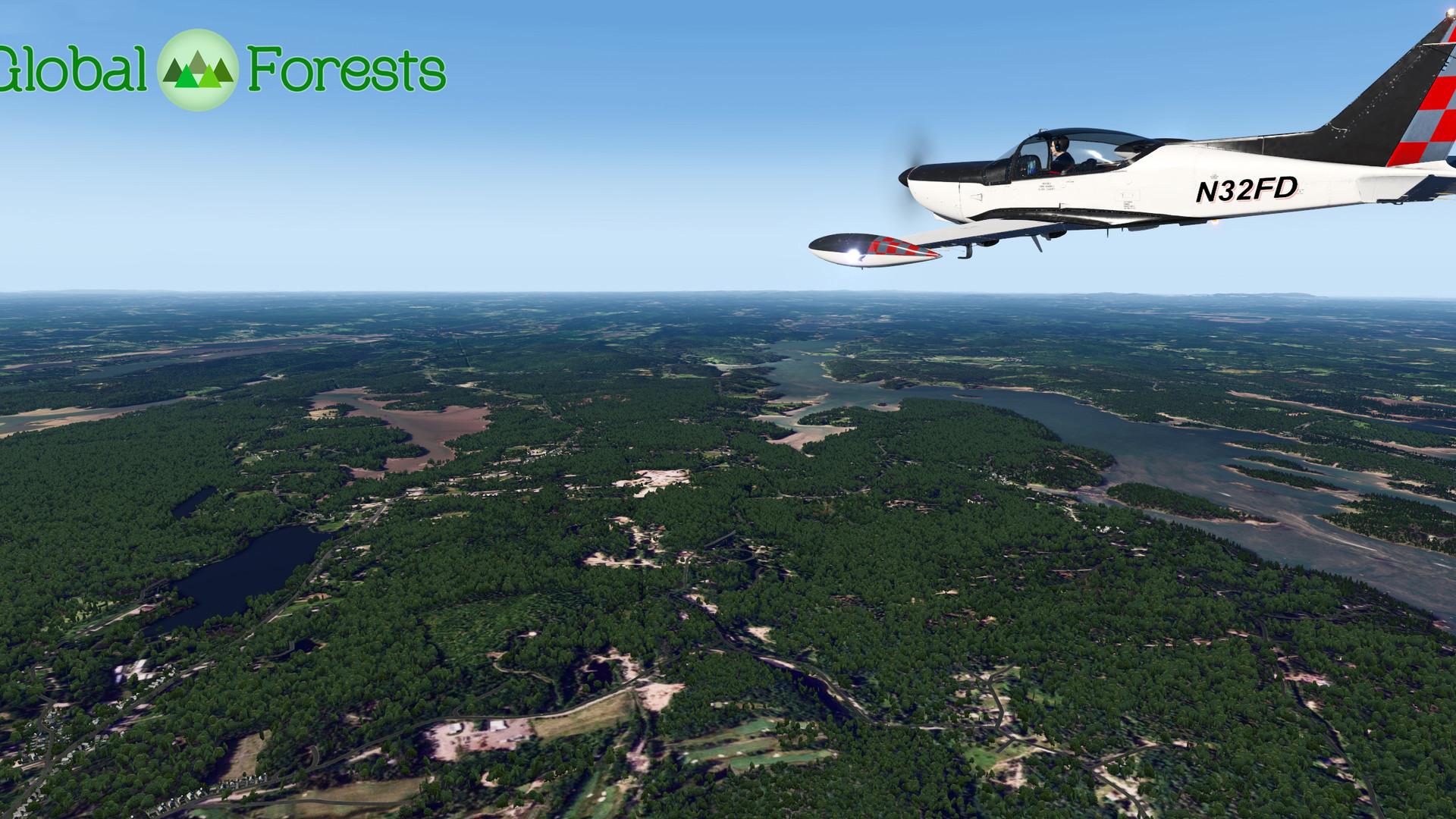 Global_Forests_USA.jpg