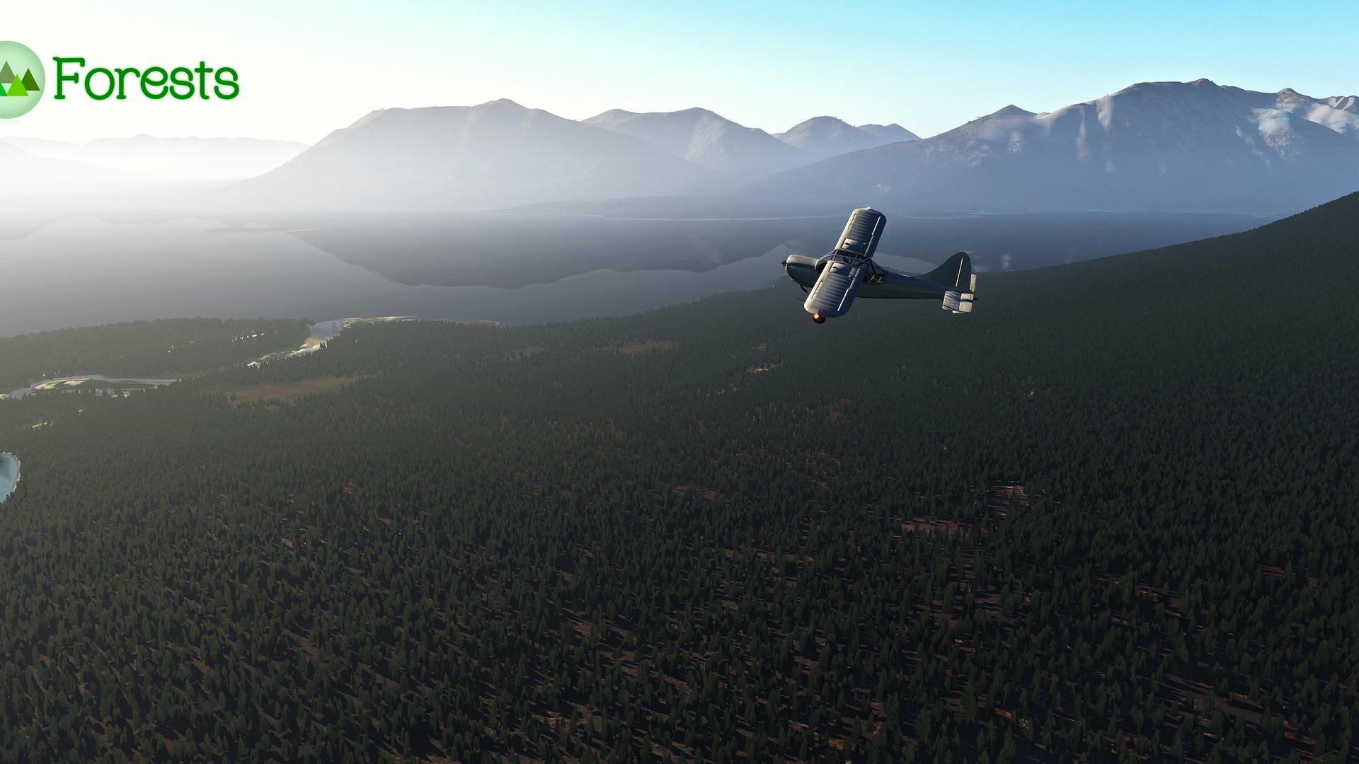 Global_Forests_Alaska2.jpg