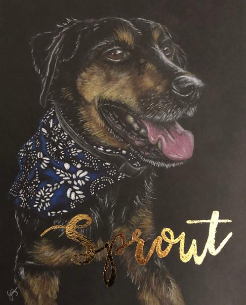 A doggo named Sprout