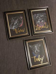 Doggos named Vera, Loreali, and Toby