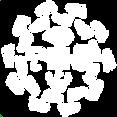Foraging walks white logo.png