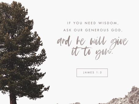 Need Wisdom?