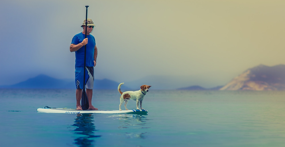 Man and dog standing on a standup paddle board surrounded by calm water