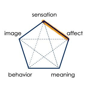 sibamsensaffect (1).jpg