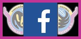 redes sociales face.jpg