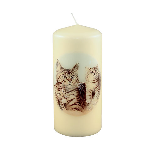 Tabby Cat &  Kitten Candle
