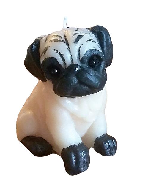 Pug Puppy Dog Candle