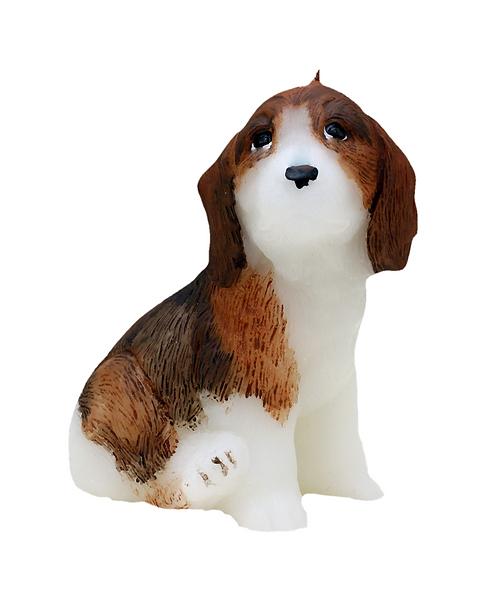 Beagle Candle