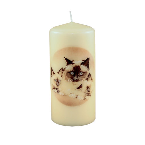 Siamese Cat & Kittens Candle