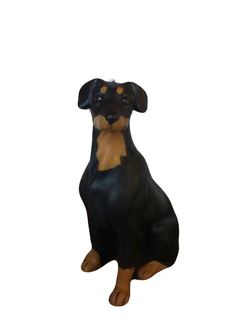 Dobermann Dog Candle