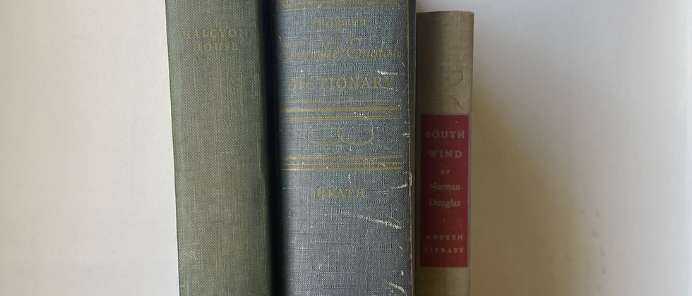 Vintage Decorative Books | Set of 3