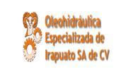 Olehidraulica Especializada de Irapuato,