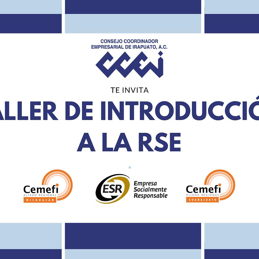 Taller de Introducción a la RSE 2021 (Guanajuato Entidad Promotora)