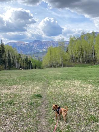 Back in Colorado!
