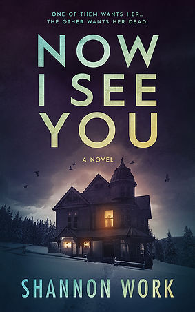 Now I See You by Shannon Work