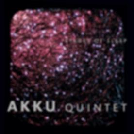 akku_Cover_web_edited.jpg