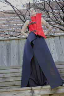 Eveningwear Dress Project