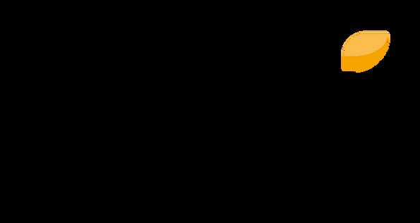 Gali Group