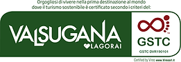 Logo Valsugana GST VIREO ESECUTIVO OK.pn